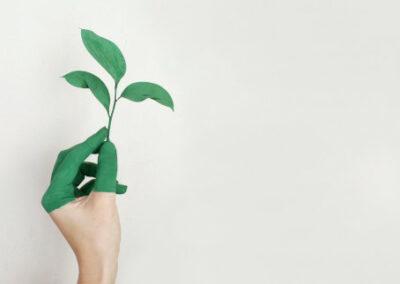 Projet développement durable